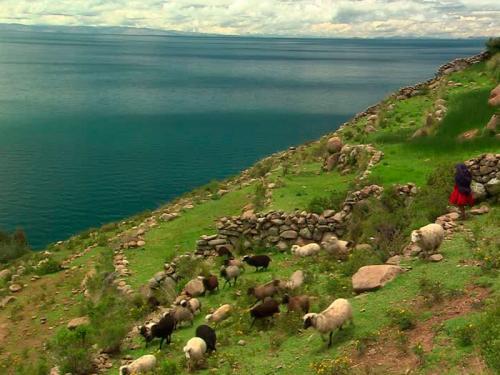 Titicaca-4
