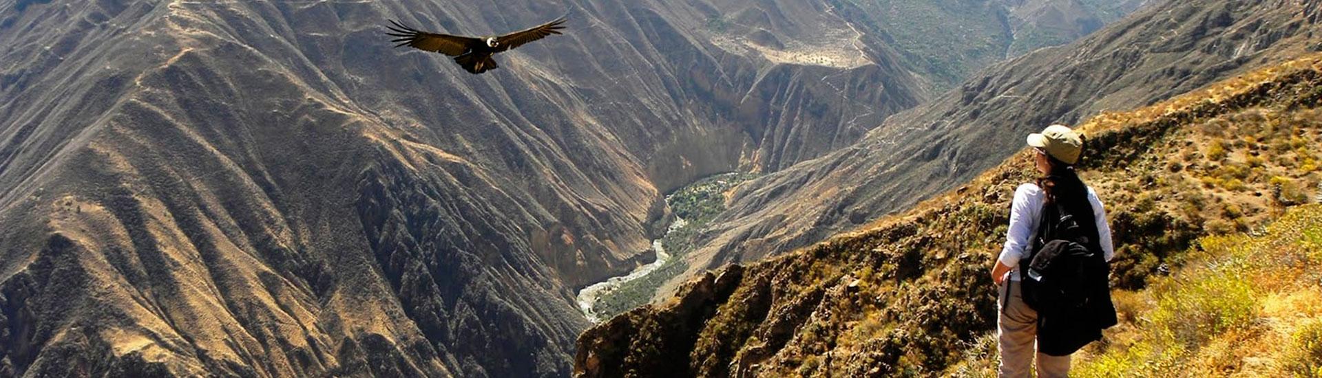 Colca Canyon 01 Day.